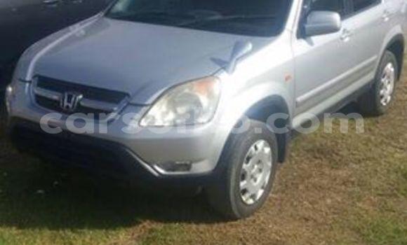 Buy Honda CR-V Silver Car in Maseru in Maseru