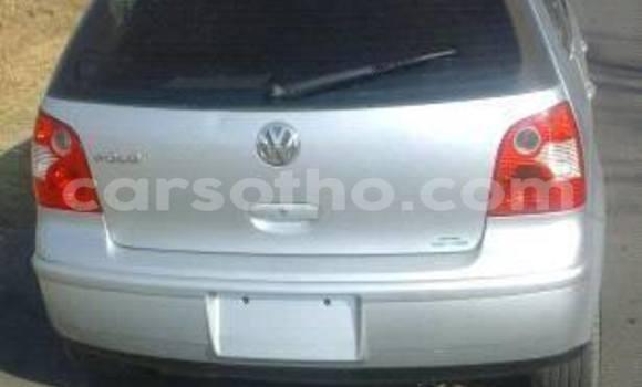 Buy Volkswagen Polo Silver Car in Maseru in Maseru