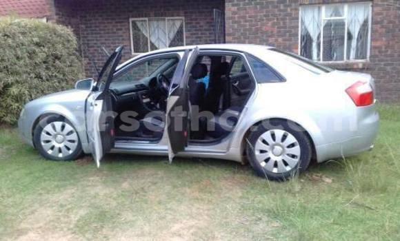 Buy Audi A4 Silver Car in Maseru in Maseru