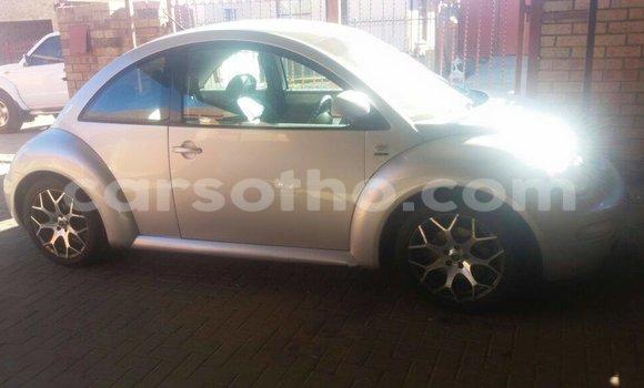 Buy Volkswagen Beetle Silver Car in Maseru in Maseru