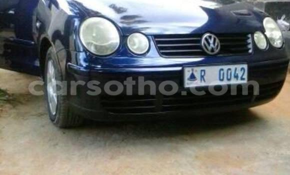 Buy Volkswagen Polo Blue Car in Maseru in Maseru