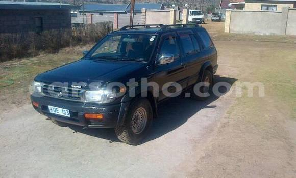 Buy Nissan Terrano Black Car in Maseru in Maseru